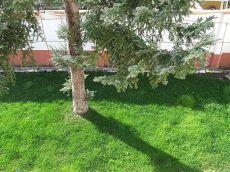 Alquiler casa terraza y jardin Illescas