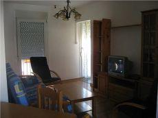 Alquiler de piso en Sabi�anigo