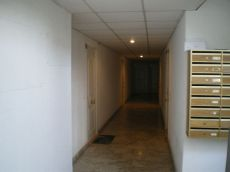 Alquiler apartamento Virgen del Pilar