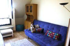 Alquiler piso apartamento tipo loft