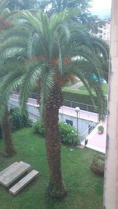 Se alquila piso en Bertamirans, avenida da mahia