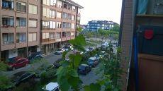 Alquiler piso en el centro de Suances