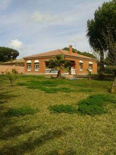 Alquiler casa Sancti petri - la barrosa