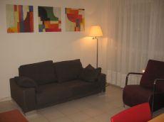 Apartamento en alquiler. Amueblado. Una habitacion. 380 eur.
