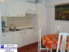 Alquiler aprtamento 1 habitacion