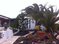 Villa para alquiler con opcion a venta en Parque Holandes