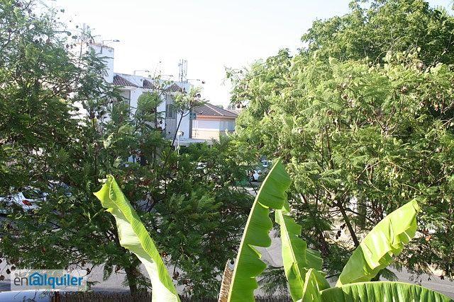 Alquiler de pisos de particulares en la ciudad de mairena del aljarafe - Muebles poligono pisa ...