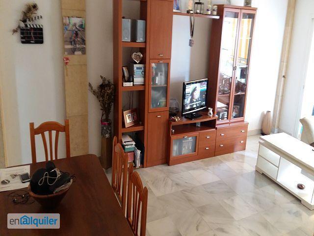 alquiler de pisos de particulares en la ciudad de san